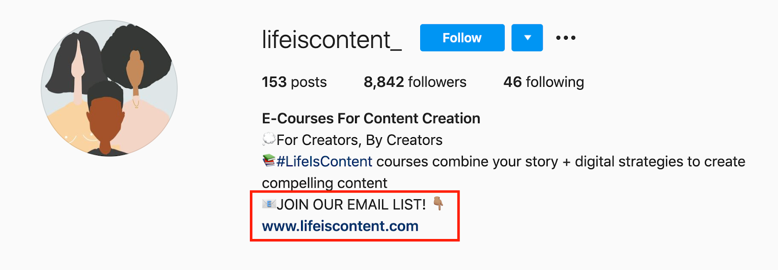 joing email list cta in instagram bio