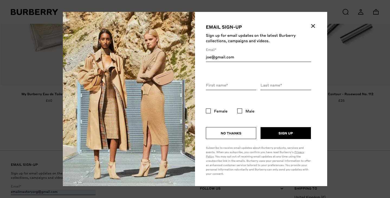 email marketing luxury brand